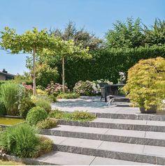 #ClippedOnIssuu from Diebold, Schaub - Gartensituationen