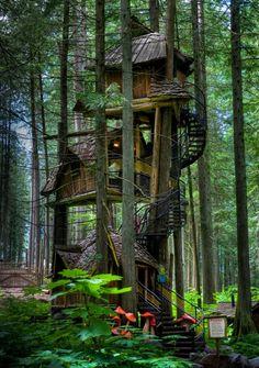 tree house of fairy tales