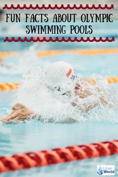 With swimming being the third most popular Olympic game to watch, discover fun facts about Olympic swimming pools from LinerWorld!