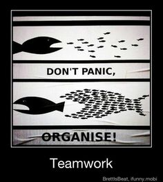 Even though being part of a startup is crazy, we learn to organize the chaos with one another