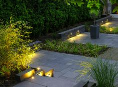 Beautiful landscaping and lighting.
