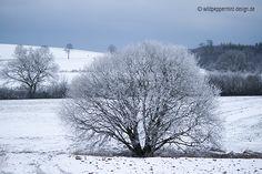 #Winter von seiner schönsten Seite // © wildpeppermint-design.de