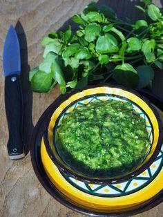 Pesto de cresson Pourquoi ne pas changer du basilic et utiliser du cresson pour un délicieux pesto qui a du caractère. Pour acompagner poisson, grillades ou pâtes... Une recette @mpkitchen