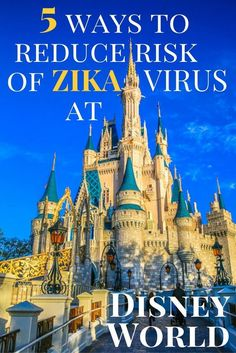 The Disney World Zika Virus risks. A Luxury Disney expert who is always the first bitten shares her strategies for a mosquito-bite free Disney vacation. Disney World Florida, Disney World Vacation, Disney World Resorts, Disney Vacations, Walt Disney World, Disney Honeymoon, Disney Worlds, Disney Travel, Disney Family
