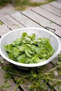 Methods for drying mint leaves