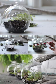 We found this informative and creative tutorial on how to create a simple yet stylish hanging terrarium on https://needlesandleaves.squarespace.com/ a great succulent and terrarium info and project site. Read below to see this step by step on how to create your own miniature hanging garden an