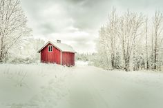 *-*Photo Middle of the Snow by Jimi Österberg on Winter Pictures, The Middle, Winter Wonderland, Snow, Frosted Window, House Styles, Barns, Outdoor, Beautiful