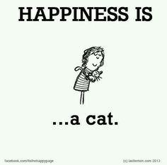 ~Happiness is a Cat