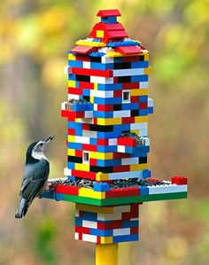 A huge list of Backyard Bird feeders and bird watching activities for kids~DIY bird feeders, LEGO bird feeders, bird worksheets, recipes for bird feeders, bird identification apps.your kids won't be bored this winter! Fun Crafts For Kids, Diy For Kids, Activities For Kids, Diy And Crafts, Diy Lego, Lego Craft, Legos, Bloc Lego, Bird Feeder Craft