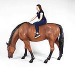 Brown Horse Life Size Statue Working Admin Login, Admin Password, Life Size Statues, Animal Statues, Brown Horse, Horses, Animals, Animaux, Horse