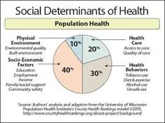 diagrams for social determinants of health - Google Search