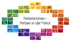 materialwiese: Farben in der Natur - Legekärtchen