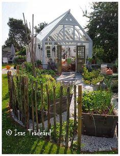 Isas Trädgård: Växthusbilder på begäran !