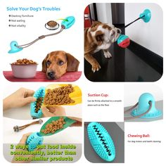 PRODUCT DETAILS: Sparta dog ball with suction Cup is suitable for chewing, playing, and brushing dogs ' teeth. To encourage the dog to do more exercise and prevent them from becoming fat and have a healthy body. With a bright look, it is attractive for the dog and makes them not refuse it.To encourage the dog to do more exercise and prevent them from becoming fat and have a healthy body.