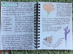 Once a Month Nature Journal Project: Recap entry. Nature Journal May 1 last CA entry May 2017, Nature Study, Nature Journal, Journal Pages, Homeschooling, Bullet Journal, Projects, Log Projects, Blue Prints