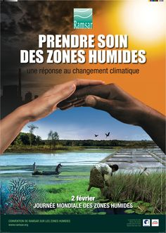 world wetlands day, posters - Yahoo Image Search Results Poem Quotes, Poems, Countries Around The World, Around The Worlds, World Wetlands Day, On This Date, Yahoo Images, Current Events, Climate Change