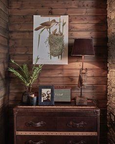 Decor, Cabin, Lighting, Lamp, Hygge, Lodge, Home Decor, Inspiration