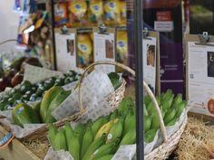 Frutas produzidas no Norte de Minas serão expostas em feira na Alemanha