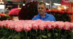 Las rosas ecuatorianas son el producto estrella en la Expo Milán