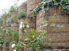 316 Best Gabion Fun Images In 2016 Gardens Arquitetura