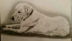 Drawing: Miss Lilly, a commission piece I did for a Christmas gift