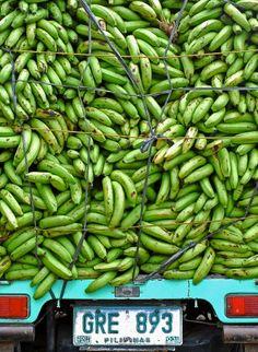 Hauling bananas in a pick up truck -- lots of bananas!