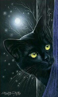 Gato preto ao luar | Black Cat art by Irina Garmashova ♥•♥•♥