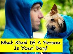 What Kind Of A Person Is Your Dog?