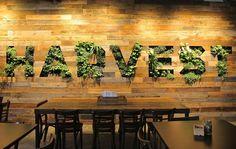 facebook- harvest cafe- living wall, habitat horticulture ...