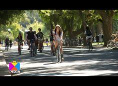 La bicicleta es para los amantes del cicloturismo una compañera imprescindible. Para que trasladarla no sea una odisea aparte, aquí algunos tips para llevarla de viaje.