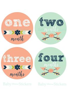 Baby Girl Monthly Month Stickers Floral by BabyMilestoneSticker
