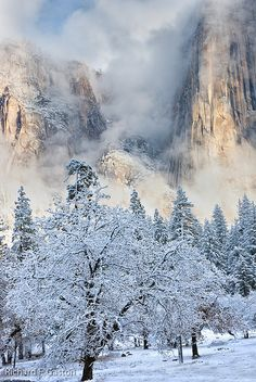 Yosemite National Park; USA. Winter view.