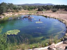 Simple Swimming Pond Ideas for Alternative Swimming Pool for Fun Summer Inspiration Pictures) Swimming Pool Pond, Natural Swimming Ponds, Natural Pond, Swimming Pool Designs, Backyard Water Feature, Ponds Backyard, Pond Design, Landscape Design, Garden Design Ideas On A Budget
