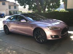 """Tesla in the Wild"" - Champagne colour. Don't know if the ""caviar dreams"" is included!"