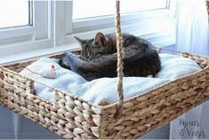 11 Cat Projects You Can DIY With Materials You've Already Got: Your cat's going to love you for this #catsdiybed