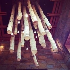 birch chandelier - Part of the reason I bought my house...cause the ceiling is tall enough to recreate this in some fashion.  I have been obsessed since the first time I saw it at the Lazy Dog
