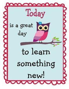 teacher classroom owls poster - Google Search