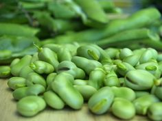 Photo of the Day: Fava Beans love them stewed!!!
