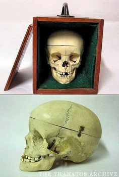 Crane d'Enfant