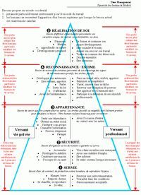 La pyramide de Maslow - Hacked By Sneaky Self Development, Personal Development, Adhd, Coaching Personal, Material Didático, Burn Out, Word Design, Positive Attitude, Motivation