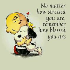 Images Snoopy, Snoopy Pictures, Quote Pictures, Photos With Quotes, Charlie Brown Quotes, Charlie Brown And Snoopy, Peanuts Quotes, Snoopy Quotes, Quotable Quotes