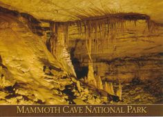 Mammoth Cave National Park, located in the state of Kentucky, has the world's largest network of natural caves and underground passageways, which are characteristic examples of limestone formations. The park and its underground network of more than 560 surveyed km of passageways are home to a varied flora and fauna, including a number of endangered species.