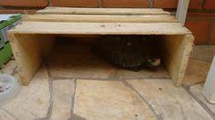 Casa para tartaruga, reformando caixa de madeira reciclável.