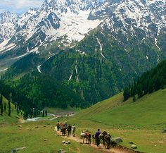 Jammu and Kashmir is a beautiful state of India, located in the north part. Kashmir tour packages offer lakes, high mountains, hills, beautiful rivers and much more to tourist. Tourist Places, Places To Travel, Places To See, Kashmir India, Kashmir Pakistan, Azad Kashmir, Indiana, Paradise On Earth, Shimla