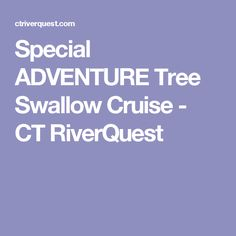 Special ADVENTURE Tree Swallow Cruise - CT RiverQuest