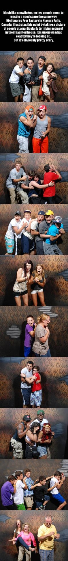 how different people get scared! made me laugh SO hard