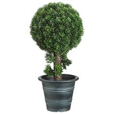18' Cedar Ball-Shaped Artificial Topiary w/Pot -Green (pack of 2) *** Visit the image link more details.