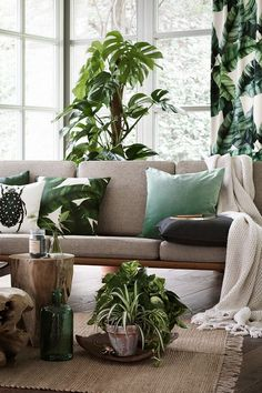Modern living room with wooden interior and green plants.