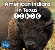American Indians in Texas Bingo reviews vocabulary related to Native Americans living in Texas before European exploration, the regions in which they lived, their economic activities, their governments, and more...TEKS 4.1B, 4.1C, 4.1D, 4.10A, 4.14A.