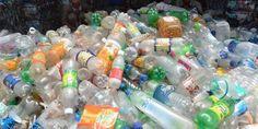 """""""C'est un « message clair à l'égard de la Commission qui a montré une nouvelle fois toute l'insouciance dont elle peut faire preuve s'agissant des perturbateurs endocriniens, en autorisant le recyclage du DEHP », avait alors souligné l'eurodéputée verte Michèle Rivasi.""""... http://mobile.lemonde.fr/planete/article/2016/08/05/une-ong-veut-faire-annuler-l-autorisation-par-l-ue-d-un-phtalate-dans-le-plastique-recycle_4978986_3244.html"""